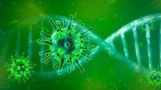 Una mutación del coronavirus aumenta significativamente su capacidad infectiva