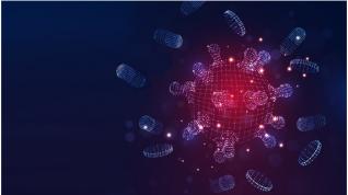 Bioinformática: Simulaciones en MOGON II para Identificar Candidatos a Drogas contra COVID-19