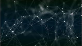 """Algoritmo diseñado para """"desmitificar"""" a las redes biológicas complejas"""