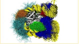 Los Movimientos de los Nucleosomas Capturados en Detalle Atómico