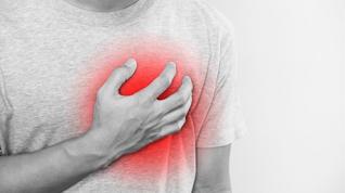 La pérdida de un gen hace 2 millones de años podría explicar las enfermedades cardiovasculares
